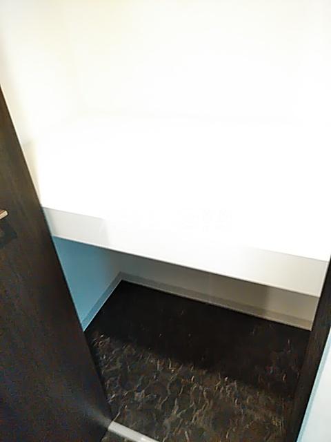 コンポジット上野毛 203号室の収納