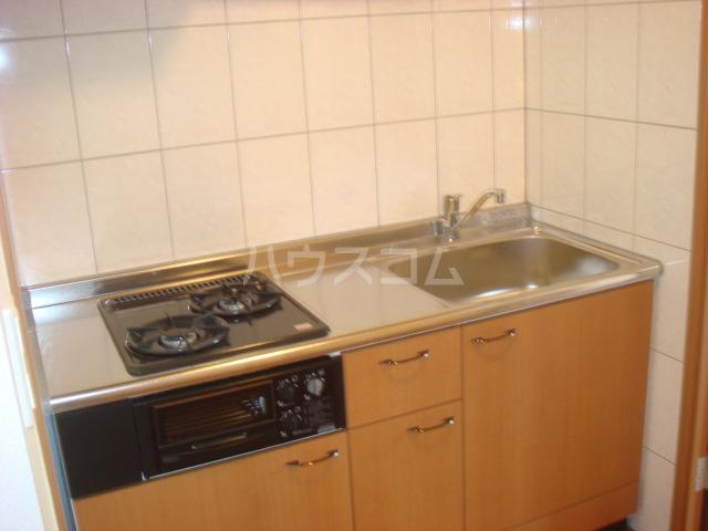 ラ・ルミナス秩父 101号室のキッチン