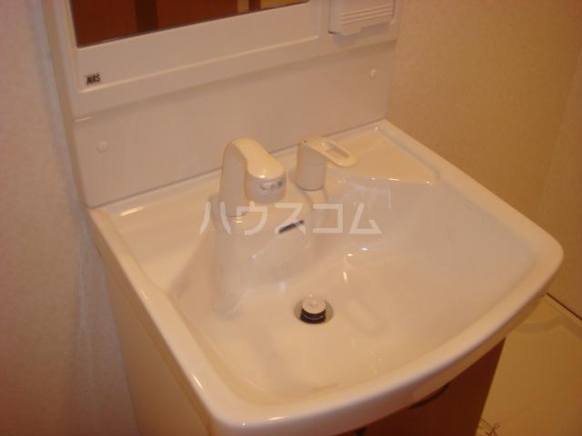 ラ・ルミナス秩父 101号室の洗面所
