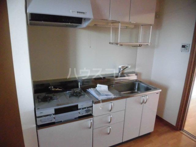 ラヴィッサンヴィーⅡ 201号室のキッチン