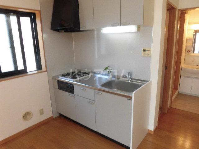 メゾン・プチパレ 203号室のキッチン