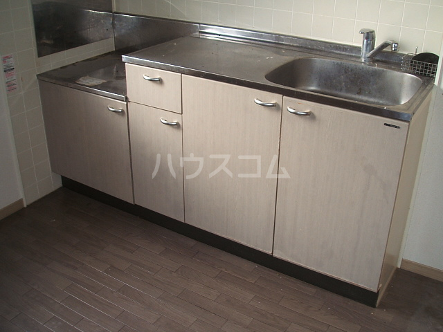 エレガンス松本 101号室のキッチン