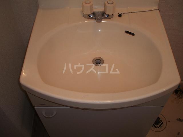 エレガンス松本 101号室の洗面所