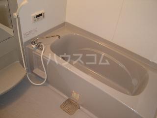 ドミール弐番館 203号室の風呂