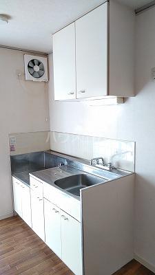 エステートピア星野Ⅱ 102号室のキッチン