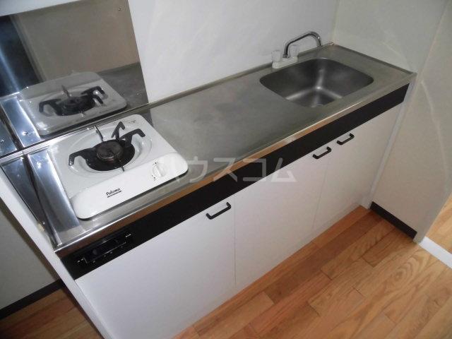 ガーデン・リラ 103号室のキッチン