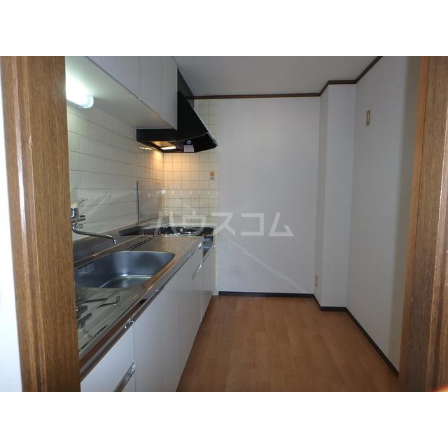 ロイヤルエリア大成 301号室のキッチン