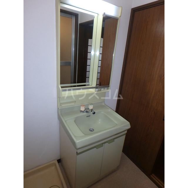ロイヤルエリア大成 301号室の洗面所