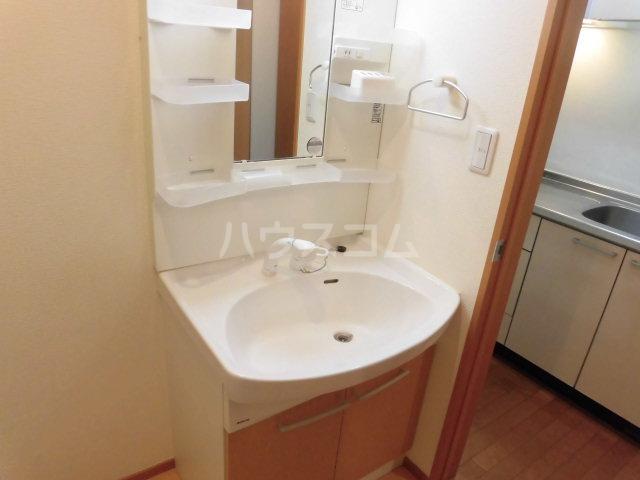 メゾン ド ブランシュ 103号室の洗面所