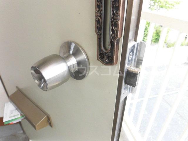 チェリーハウス 201号室のセキュリティ