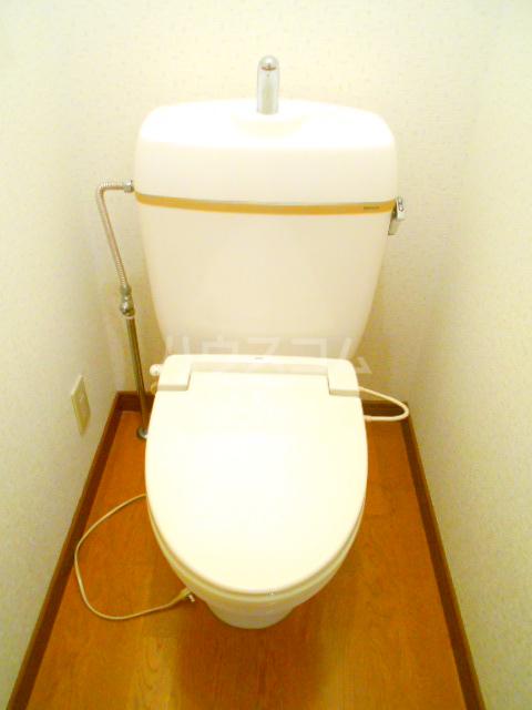 第10丸三マンション 203号室のトイレ