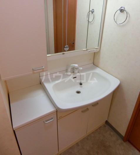 アクトフォルム武蔵小山 303号室の洗面所