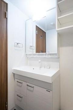 ビアンコネロ雪谷大塚 511号室の洗面所