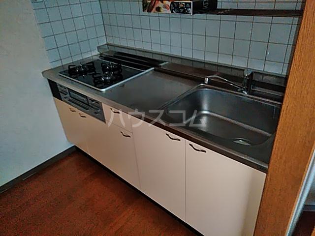 Neo・Nisiki 503号室のキッチン