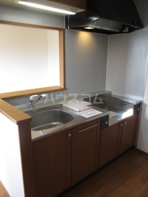 タウニィ・コスモスⅤ 202号室のキッチン