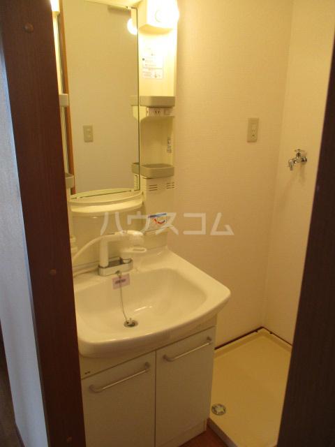 タウニィ・コスモスⅤ 202号室の洗面所