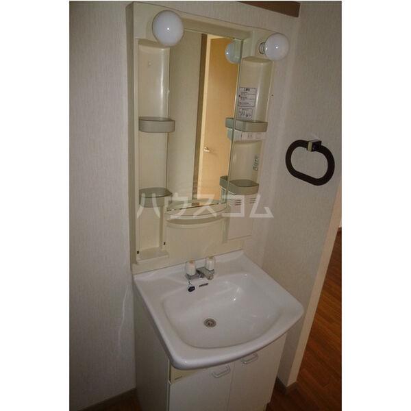 サンガーデン106 E 202号室の洗面所