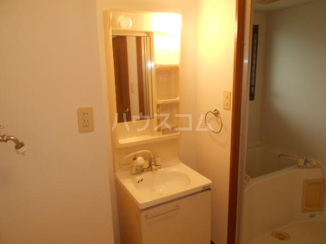 グリーンピュア 202号室の洗面所