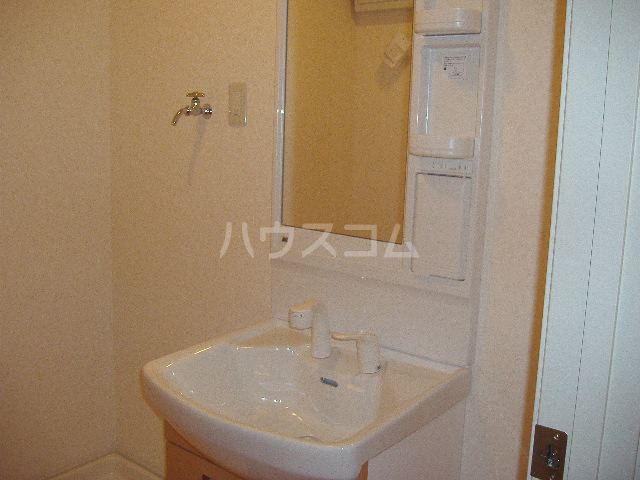リバーサイド グレース 203号室の洗面所