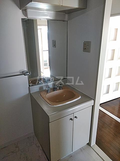パークサイド春日部 403号室の洗面所