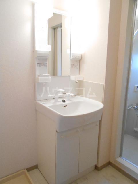 アピエ弐番館 203号室の洗面所