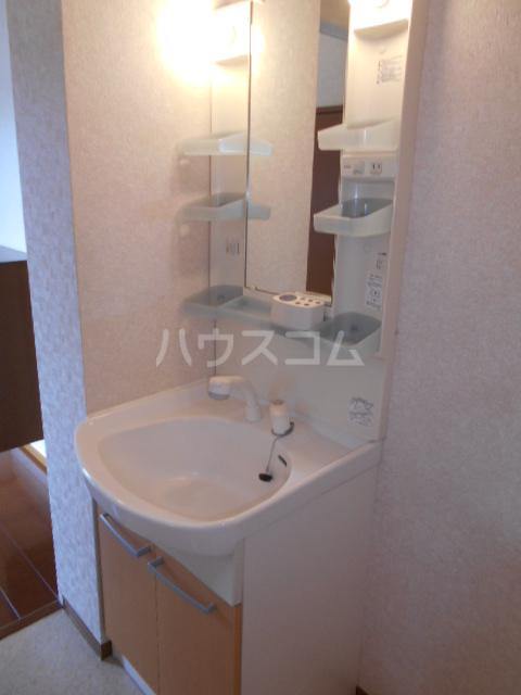 メゾンHOKUSHIN Ⅱ 203号室の洗面所