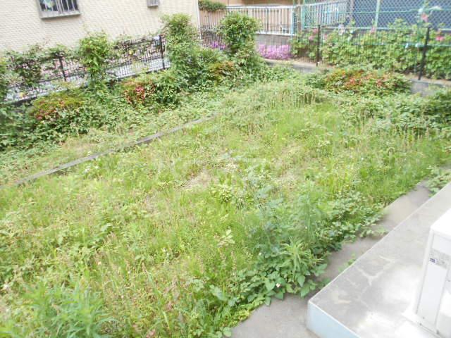 マインハイム 105号室の庭