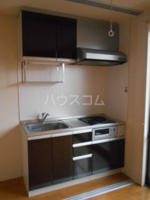 メゾンドゥリュイソー 202号室のキッチン