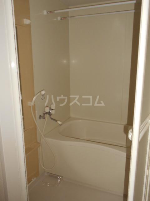 メゾンドゥリュイソー 202号室の風呂
