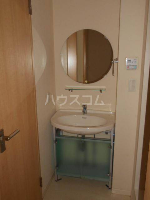 メゾンドゥリュイソー 202号室の洗面所