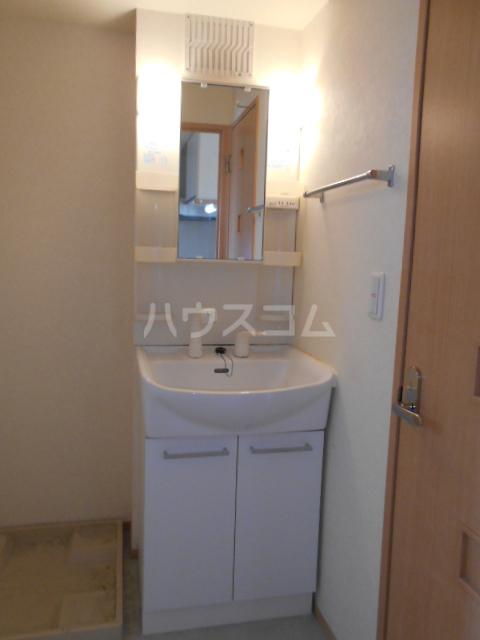 オークヒルズ Ⅱ 302号室の洗面所