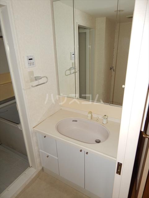 セントラルコート春日部 208号室の洗面所