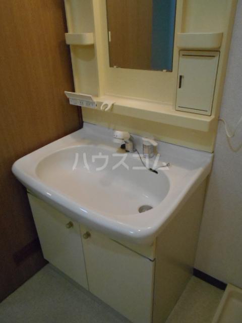 エレガンス春日部 110号室の洗面所
