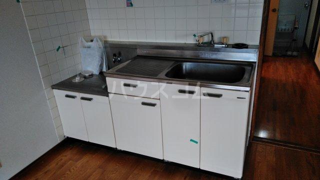 スカイプラザ 305号室のキッチン
