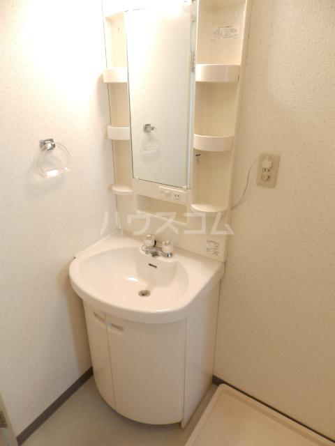 グリーンタウン石井 302号室の洗面所