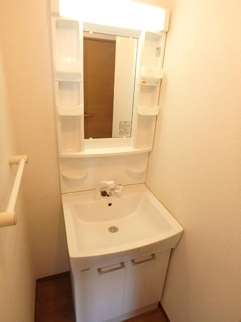ボナール97 202号室の洗面所