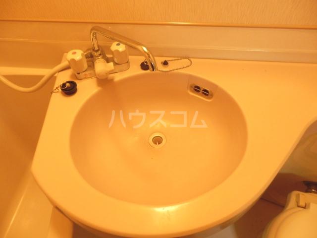 ウエストウイング 204号室の洗面所