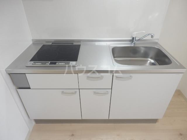 ブリリアント大木 205号室のキッチン
