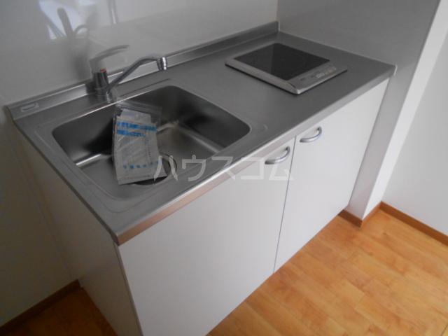 ペスカトリーチェ B号室のキッチン