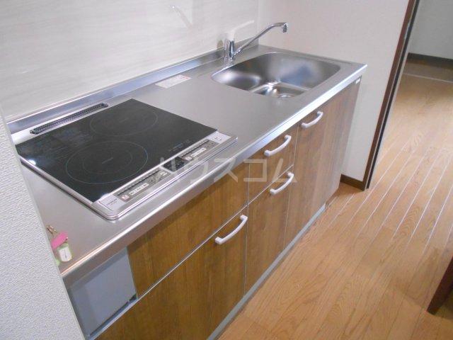 フローリッシュ津田沼Ⅲ 101号室のキッチン