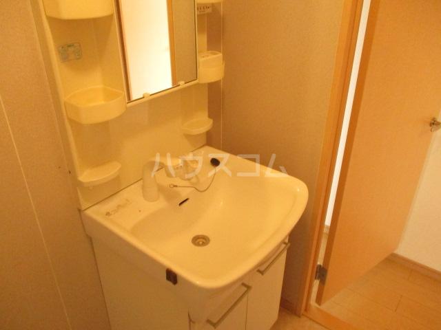 ピエルテル  5-202号室の洗面所