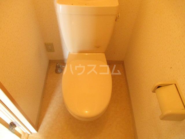 ピエルテル  5-202号室のトイレ