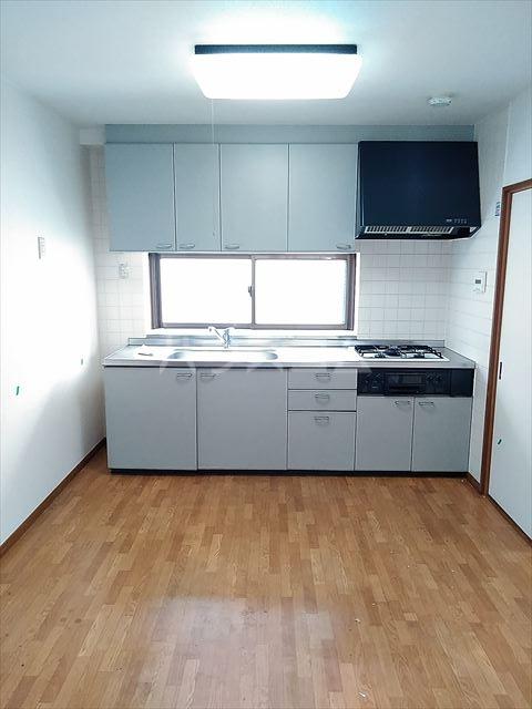 サウス・サウザンド南浦和 202号室のキッチン