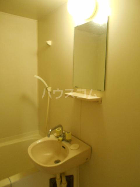 埼大前小鳩ハイツ 欅 102号室の洗面所