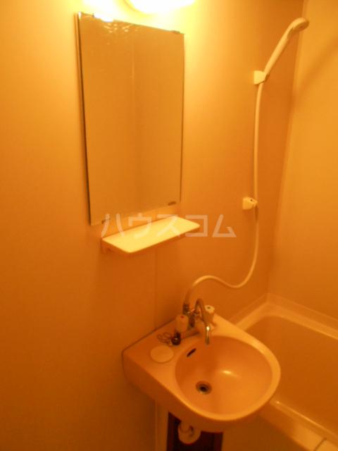 埼大前小鳩ハイツ 桜草 205号室の洗面所