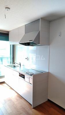 アメニティガーデン新中里 301号室のキッチン