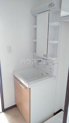 アメニティガーデン新中里 301号室の洗面所