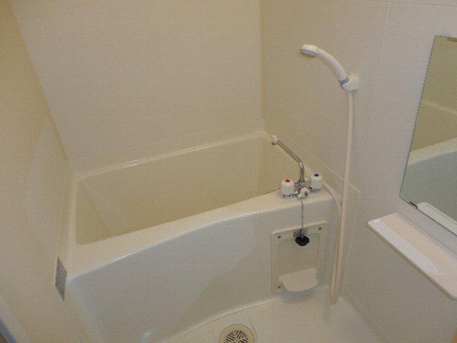 グランディール嵯峨 212号室の風呂