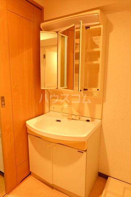 ゴールドステージ 307号室の洗面所