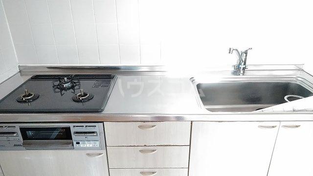 ラ・アミスタ武蔵浦和 406号室のキッチン